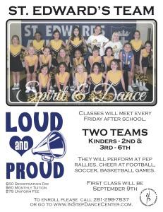 St.ED team poster 2016